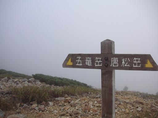 唯一の標識?