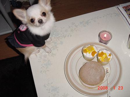 ミニとケーキ