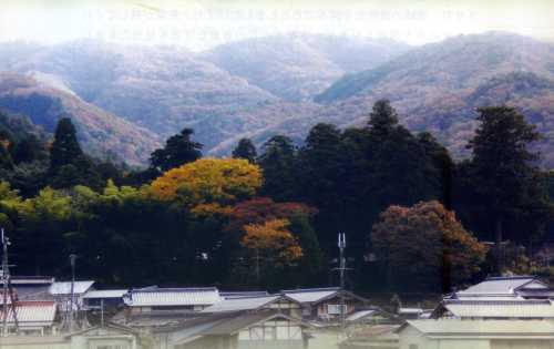 sidenoyama001.jpg