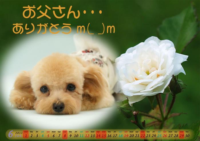 6月:父の日_ラナちゃんA5