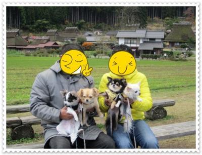 IMG_3391_20111228141223.jpg