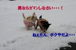 IMG_6662.jpg