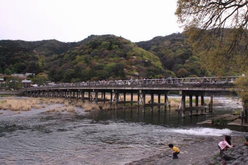 2011年4月17日 嵐山 7