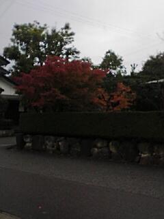 20061116180407