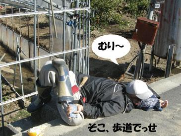 歩道で寝てる