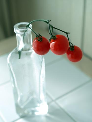 TomatoGlass