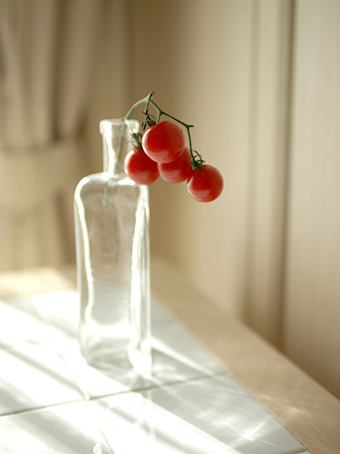 TomatoGlass_F14.jpg