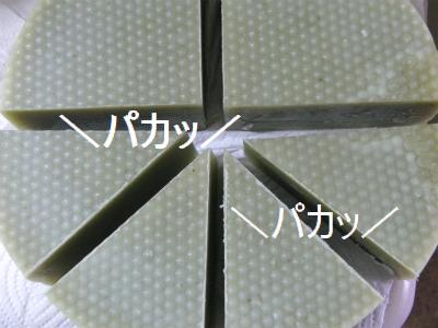 sCIMG6700.jpg