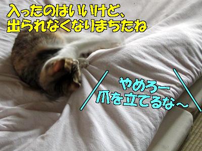110807-02.jpg