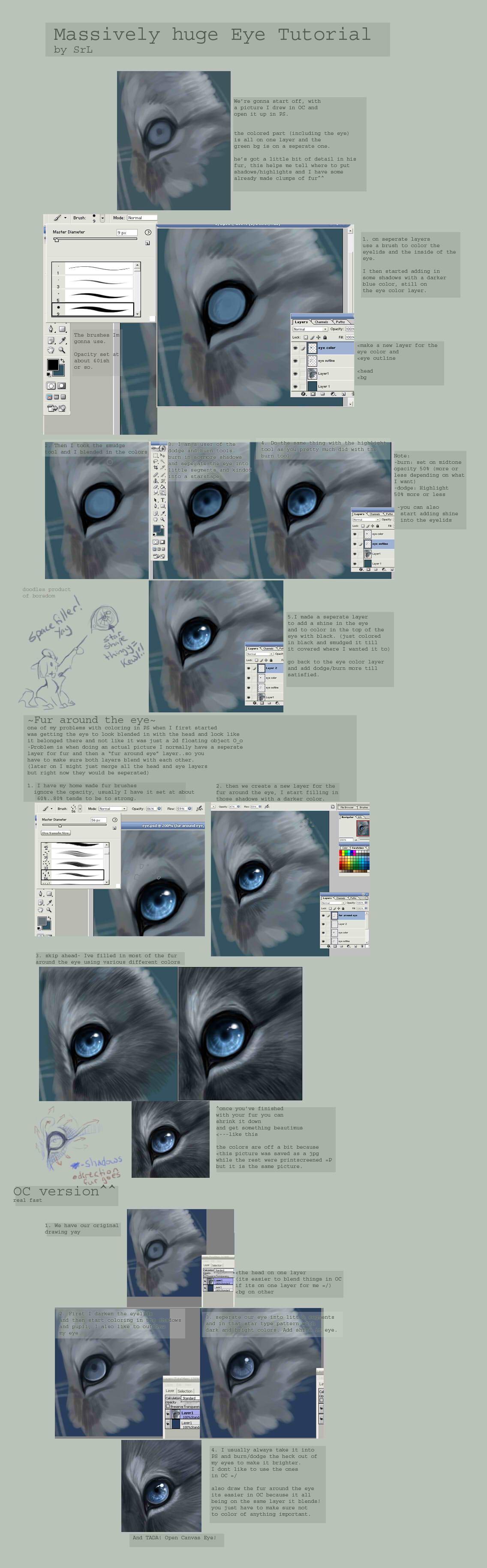 120110_animal_06.jpg
