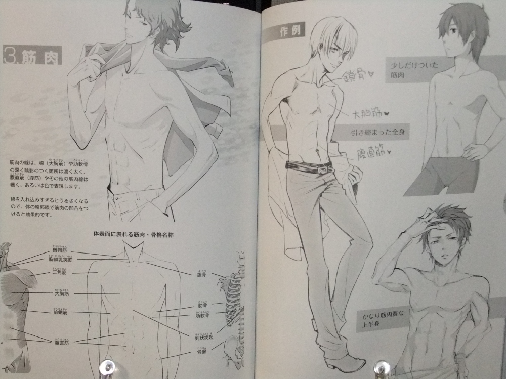 メンズ萌えキャラクターの描き方_顔・からだ編_13