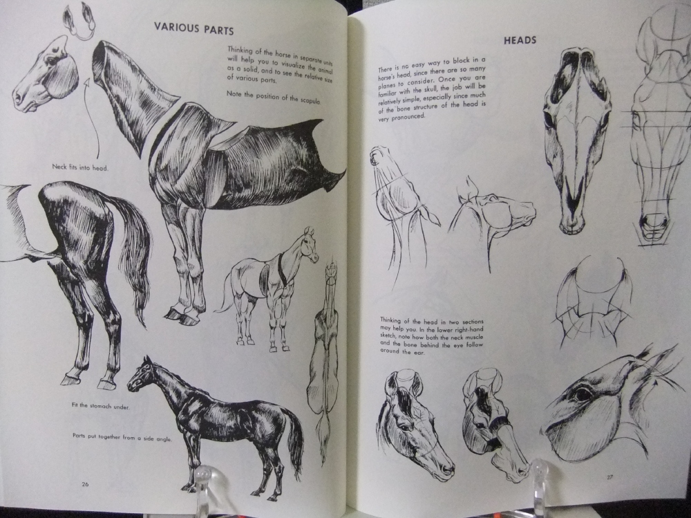 THE_ART_OF_ANIMAL_DRAWING_03.jpg