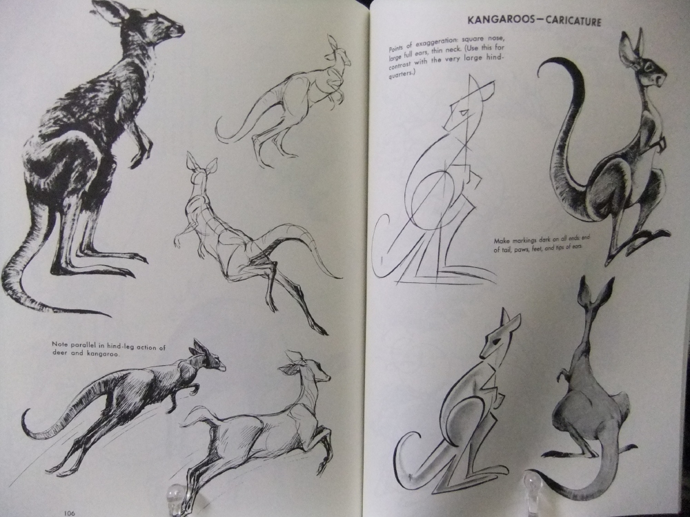 THE_ART_OF_ANIMAL_DRAWING_07.jpg