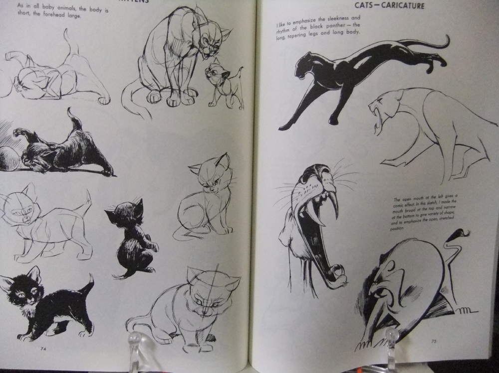 THE_ART_OF_ANIMAL_DRAWING_08.jpg