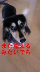 2011062710570001.jpg