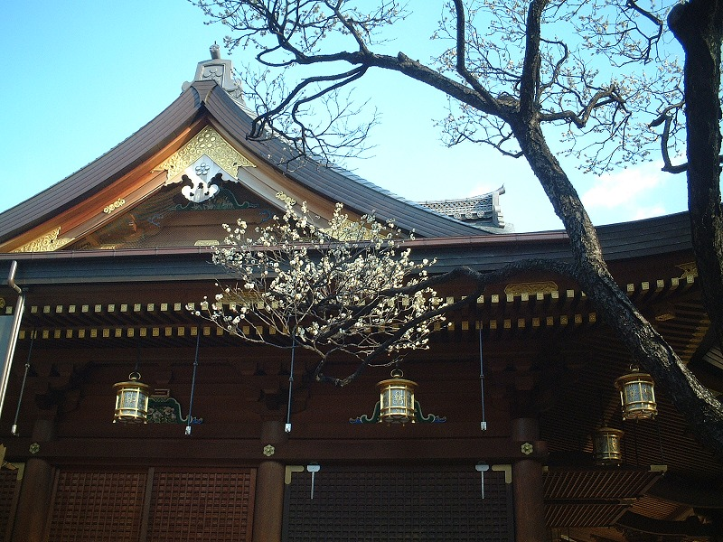 20070203湯島天神0017.jpg