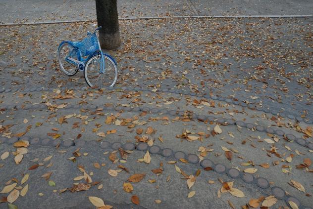 竹町公園の紅葉
