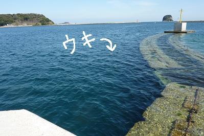 20110305呼子釣行 (10)