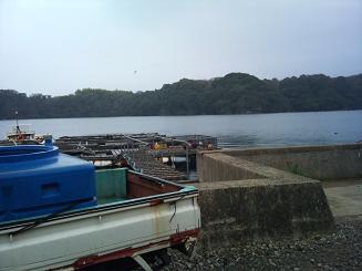 20110319魚屋 (5)