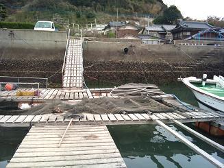 20110319魚屋 (3)
