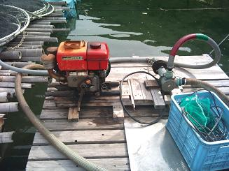 20110319魚屋