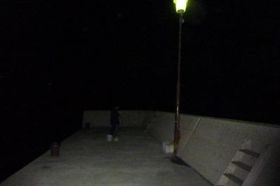 20110326定置網&釣り&ボディ (10)