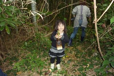 20110504筍と箱苗 (6)