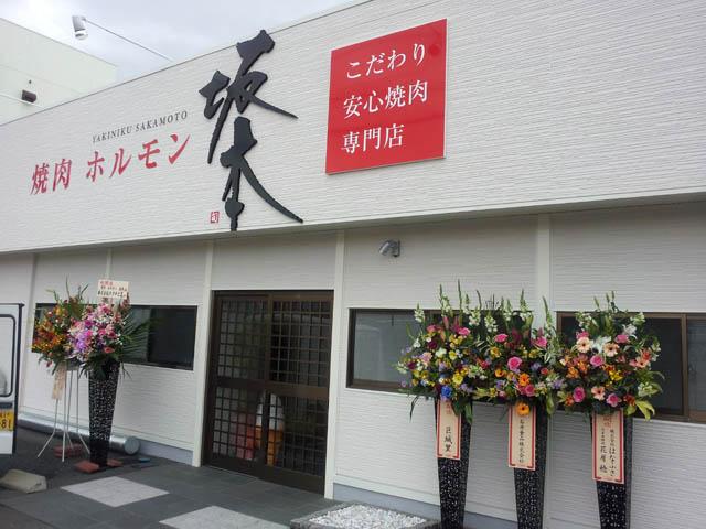 sakamoto_002_20120319175925.jpg