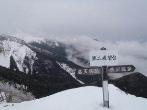 20120317-8.jpg