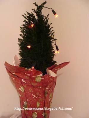 Tree_20111212125442.jpg