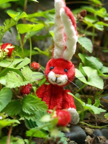 赤いウサギその1
