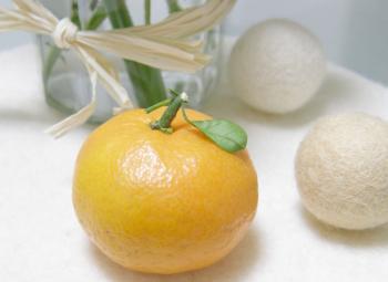 ちいさな橙