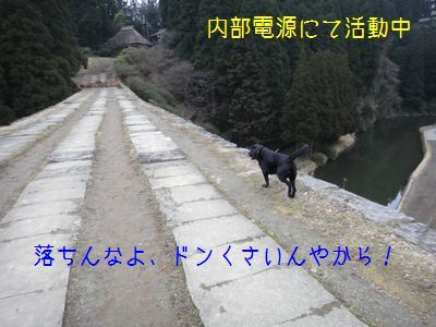2011 02 20_2848