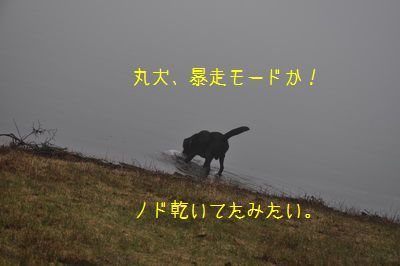 2011 05 01_7030