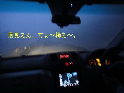 2011 05 01_7385