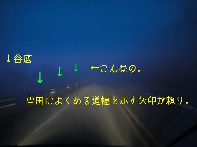 2011 05 01_7391