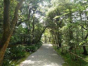 20110521akishino2.jpg