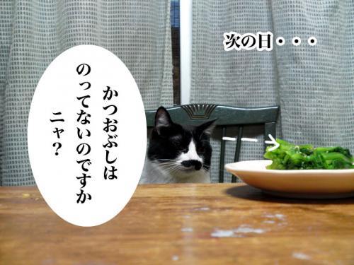 chobi_008.jpg