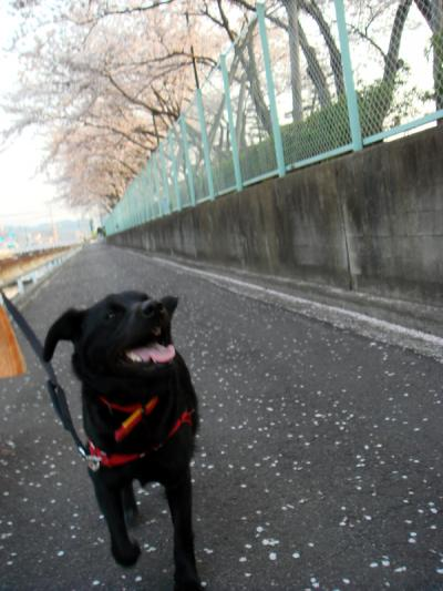 ryouma_001a.jpg