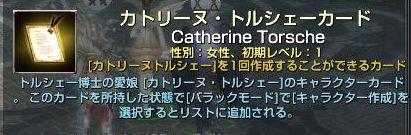 cat-036.jpg