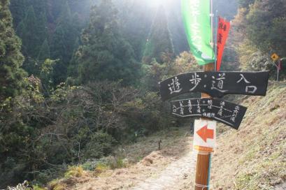 阿瀬渓谷の遊歩道