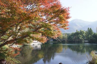金鱗湖。撮影スポットです。