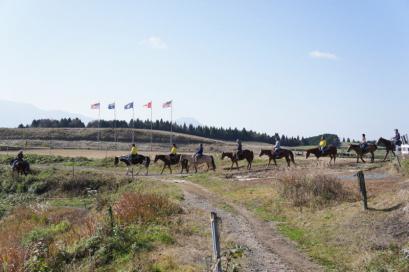 牧場を出て草原に