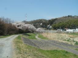 千本桜景厳 (5)