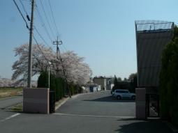 千本桜景厳 (3)