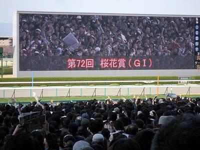 桜花賞直前の競馬ファンたち2