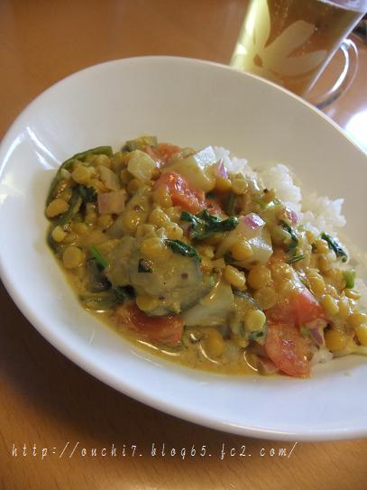 豆野菜カレー2