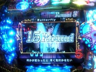 YF-T☆15Round♪