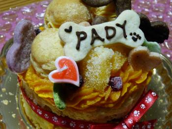 ケーキ3P1080801