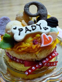 ケーキ5P1080804